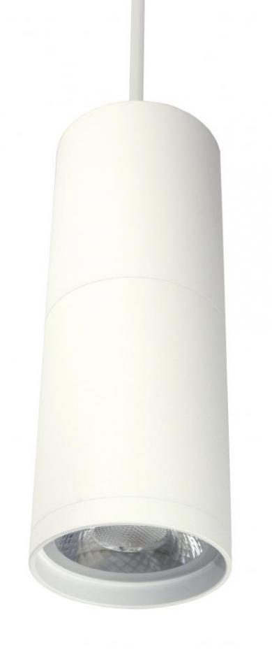 LED Diecast Aluminum Pendant - EDL81