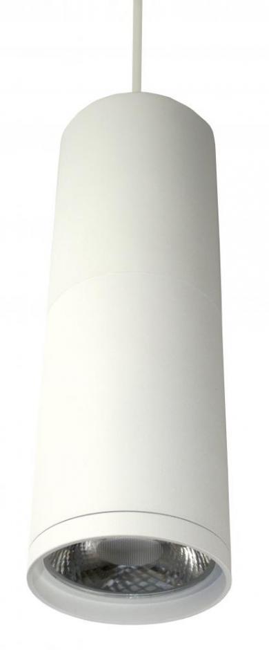 LED Diecast Aluminum Pendant - EDL83